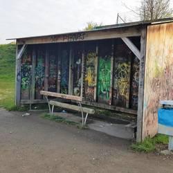 Holunterstand mit Sitzbalken und von Innen mit Graffiti besprüht