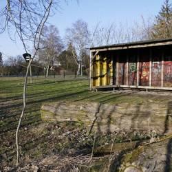 Unterstand mit drei Seitenwänden und Dach, Innenwände mit Graffiti besprüht, Baumstamm davor