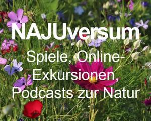 Link zu NAJUversum.de